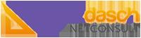 Logo platzdasch netConsult 200px